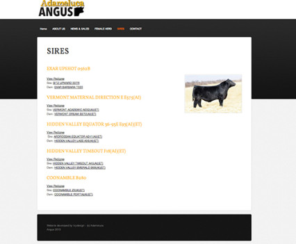 ADAMELUCA Angus website