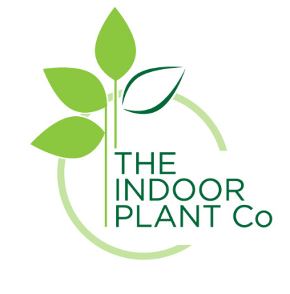 The Indoor Plant Company – Logo Design