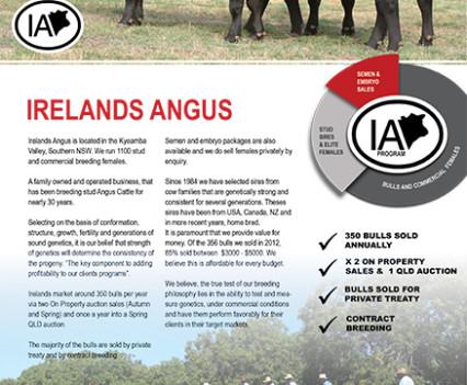 Irelands Angus - 2013 Catalogue artwork