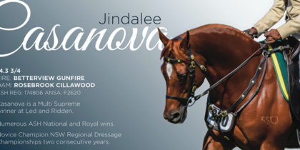 Jindalee Cassanova – Ad