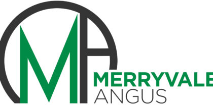 Merryvale Angus – Logo design